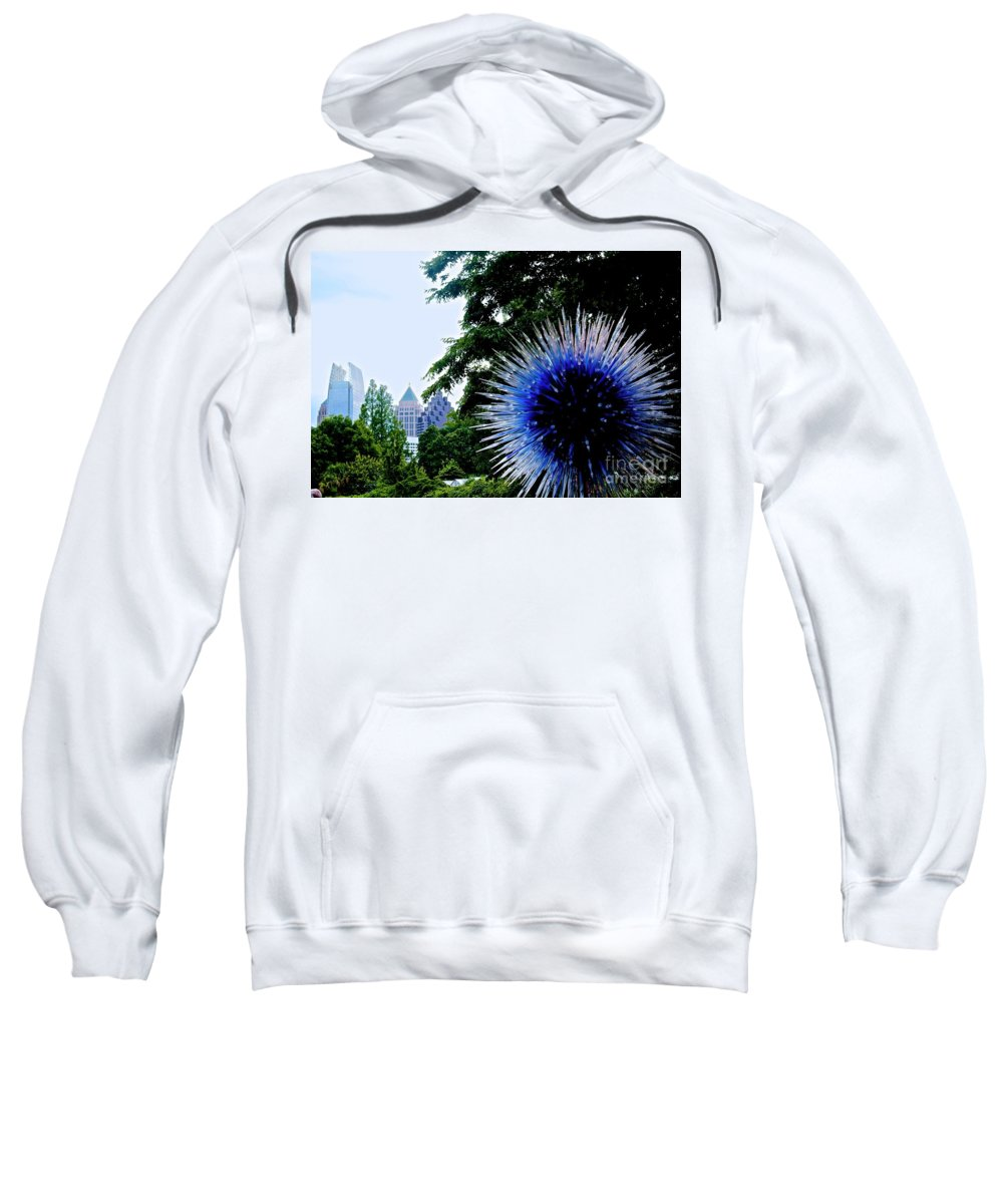 Canon T31 Eos Rebel Sweatshirt featuring the photograph 01142017076 by Debbie L Foreman