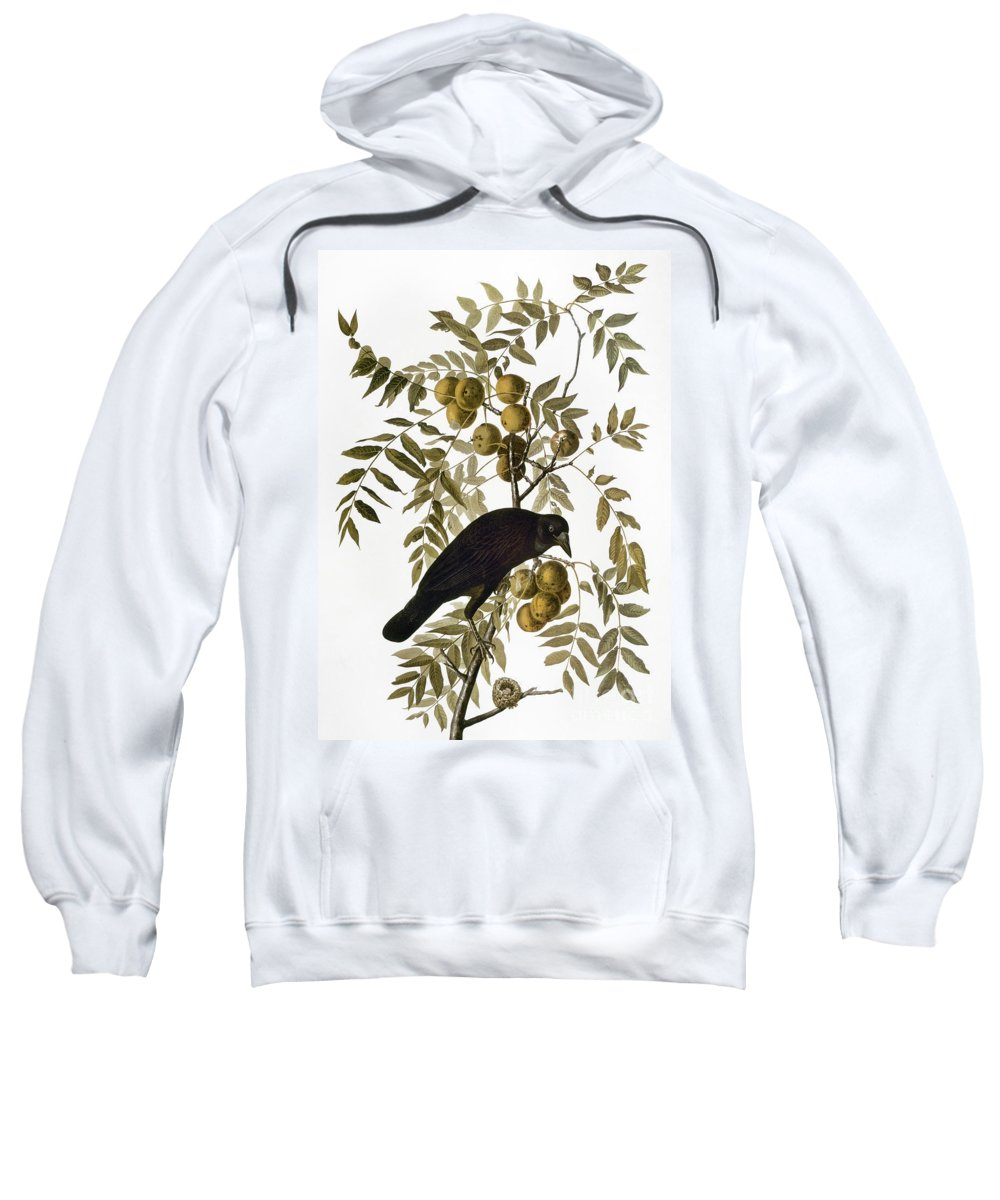 1838 Sweatshirt featuring the photograph Audubon: Crow by Granger