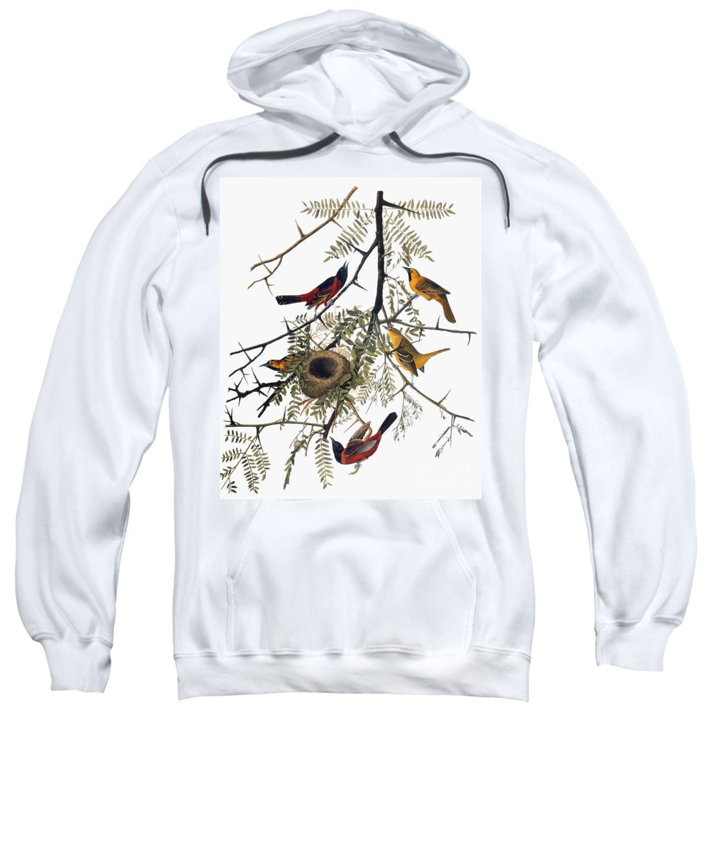 1838 Sweatshirt featuring the photograph Audubon: Oriole by Granger