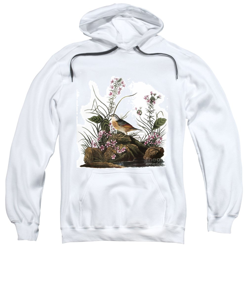 1827 Sweatshirt featuring the photograph Audubon: Sparrow, (1827-38) by Granger