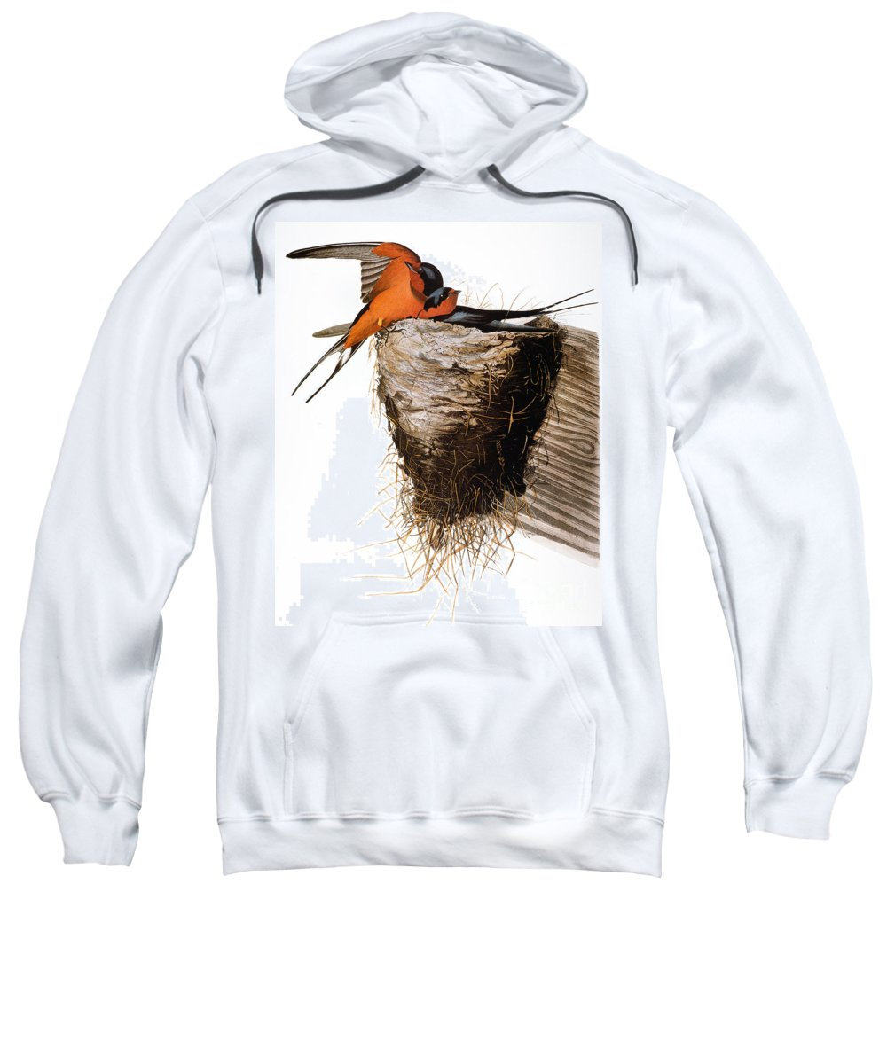 1838 Sweatshirt featuring the photograph Audubon: Swallow by Granger