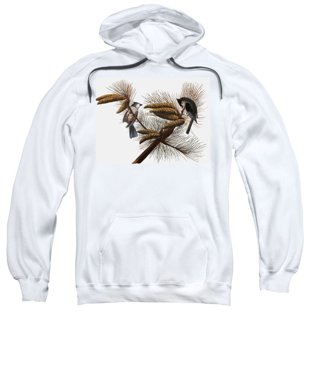 1838 Sweatshirt featuring the photograph Audubon: Titmouse by Granger