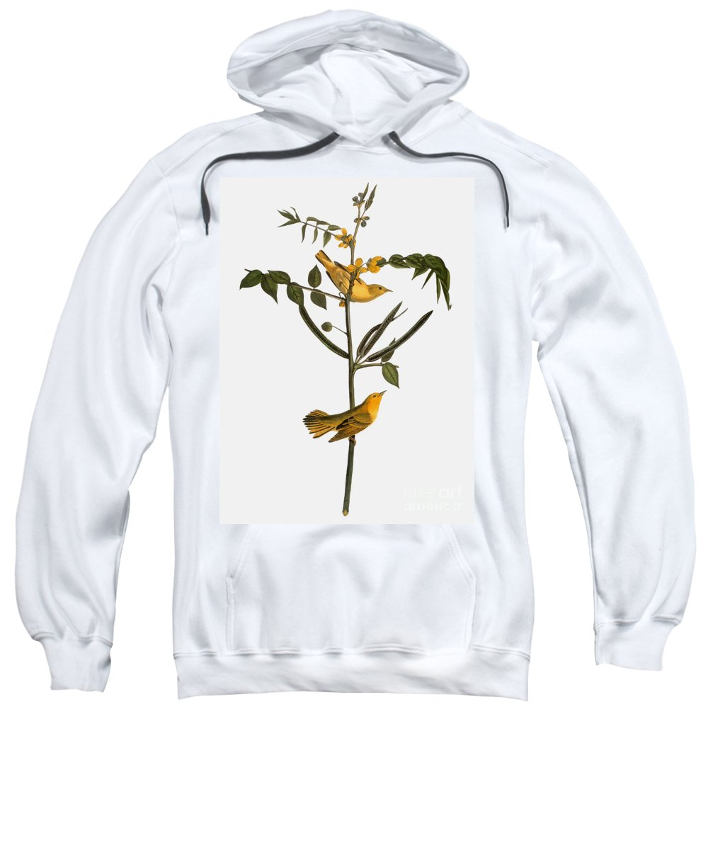 1827 Sweatshirt featuring the photograph Audubon: Warbler, 1827-38 by Granger