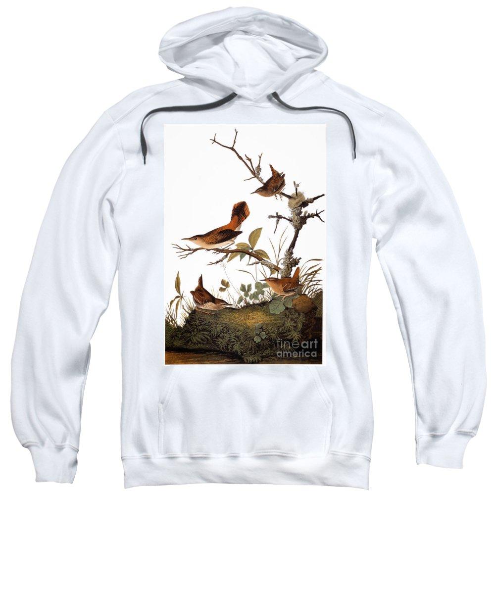 1838 Sweatshirt featuring the photograph Audubon: Wren by Granger