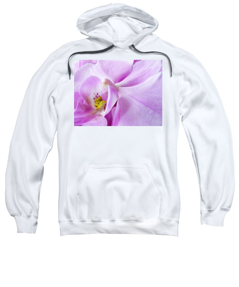 Orchid Sweatshirt featuring the photograph Orchid by Daniel Csoka