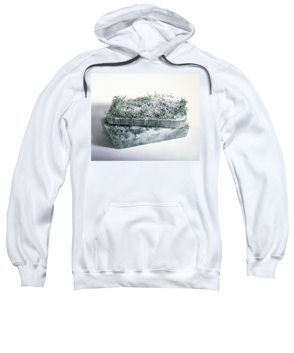 Composition Sweatshirt featuring the photograph Pine Twigs And Ice by Stefania Levi