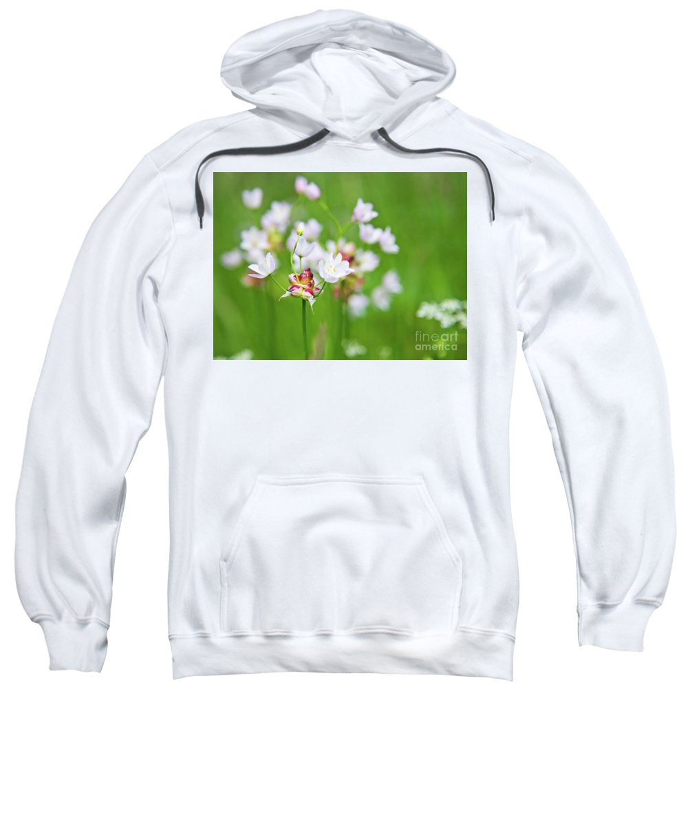 Flora Sweatshirt featuring the photograph Pink Love 4 by Alex Art and Photo