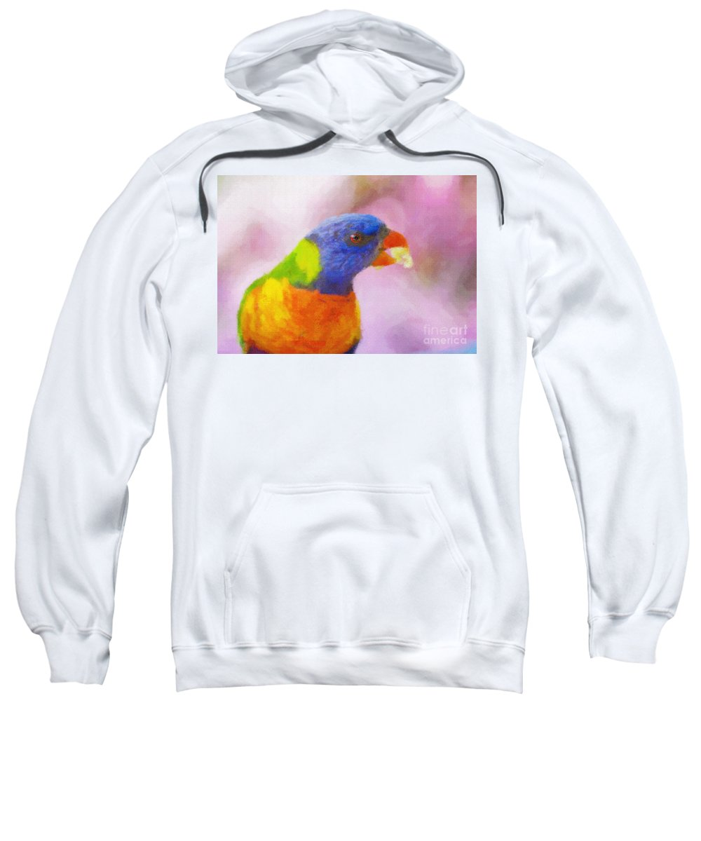 Rainbow Lorikeet Sweatshirt featuring the photograph Rainbow lorikeet by Sheila Smart Fine Art Photography