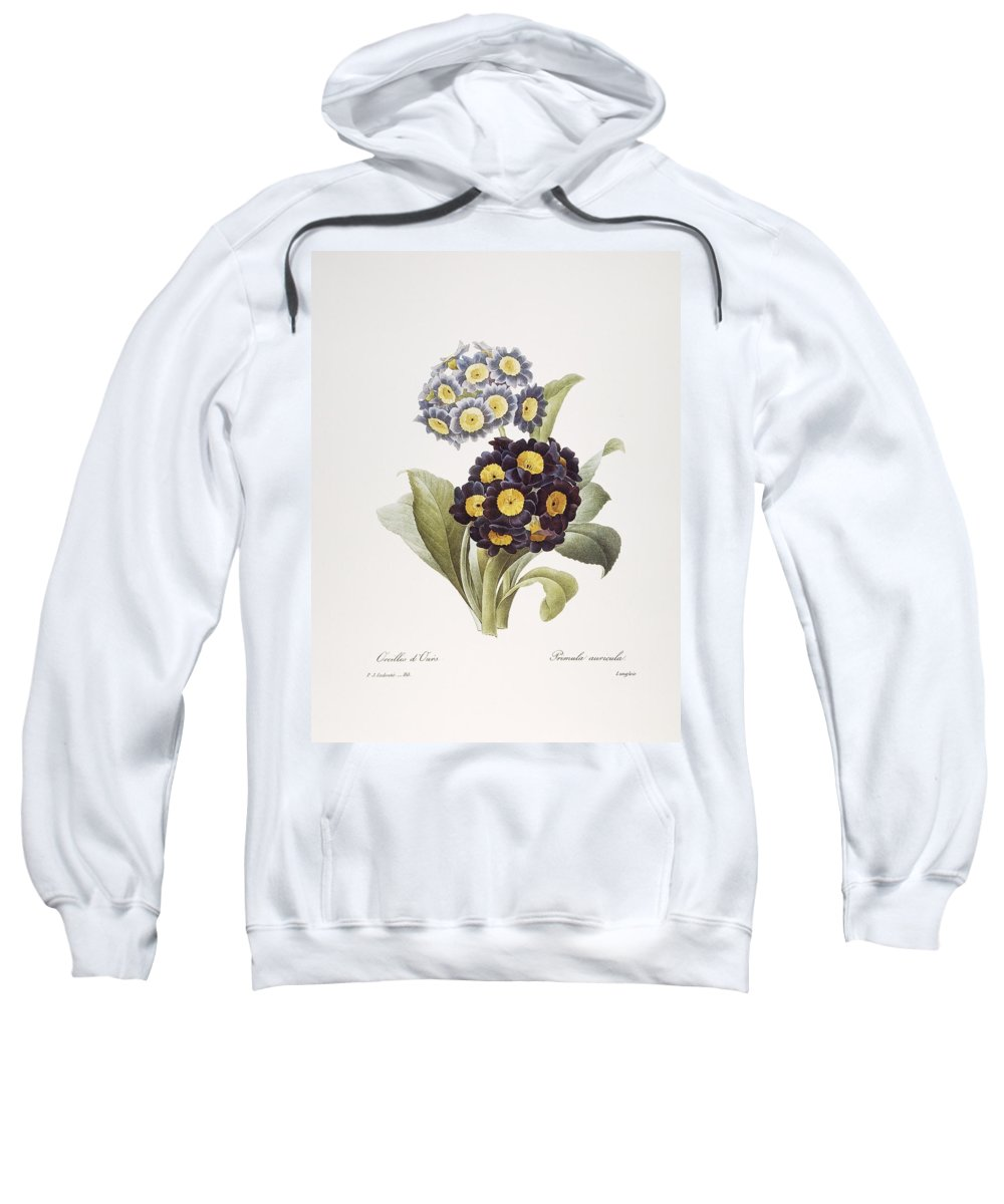 1833 Sweatshirt featuring the photograph Redoute: Auricula, 1833 by Granger