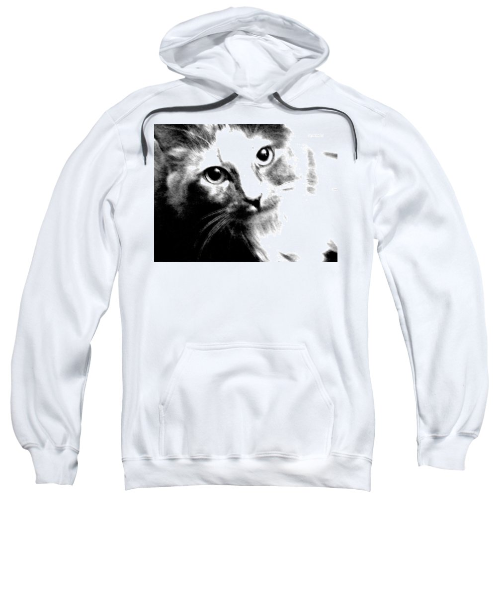 Abstract Sweatshirt featuring the photograph Shelby by Lenore Senior