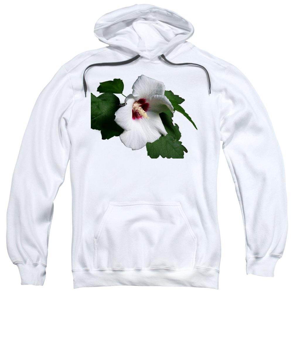 Flower Sweatshirt featuring the photograph Single Rose Sharron Flower by MountainSky S