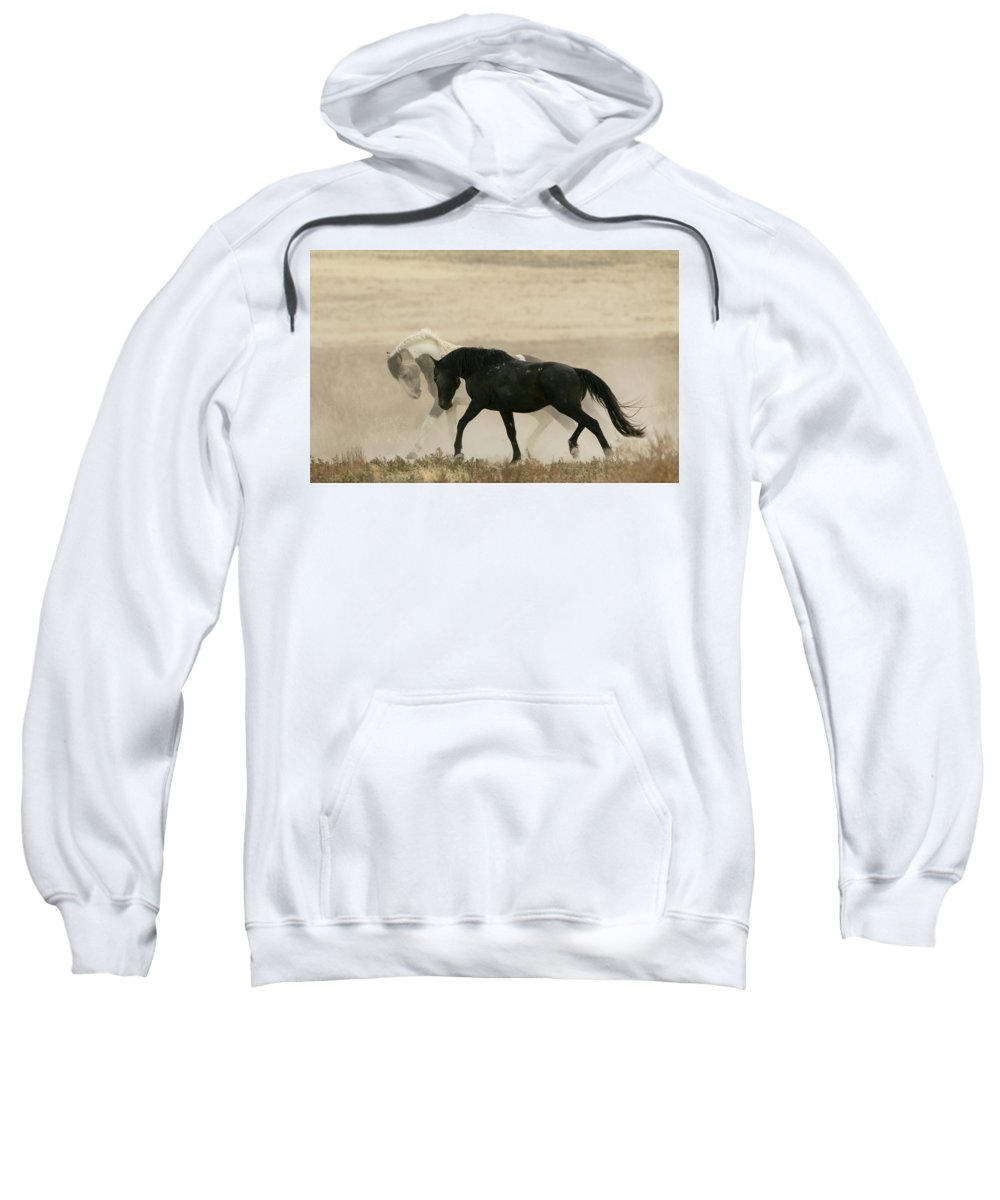 Horse Sweatshirt featuring the photograph The Challenge by Kent Keller