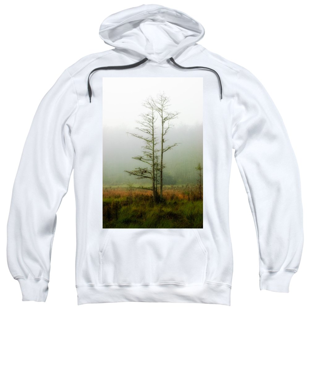 Tree Sweatshirt featuring the photograph The Foggy Dew by Rich Leighton