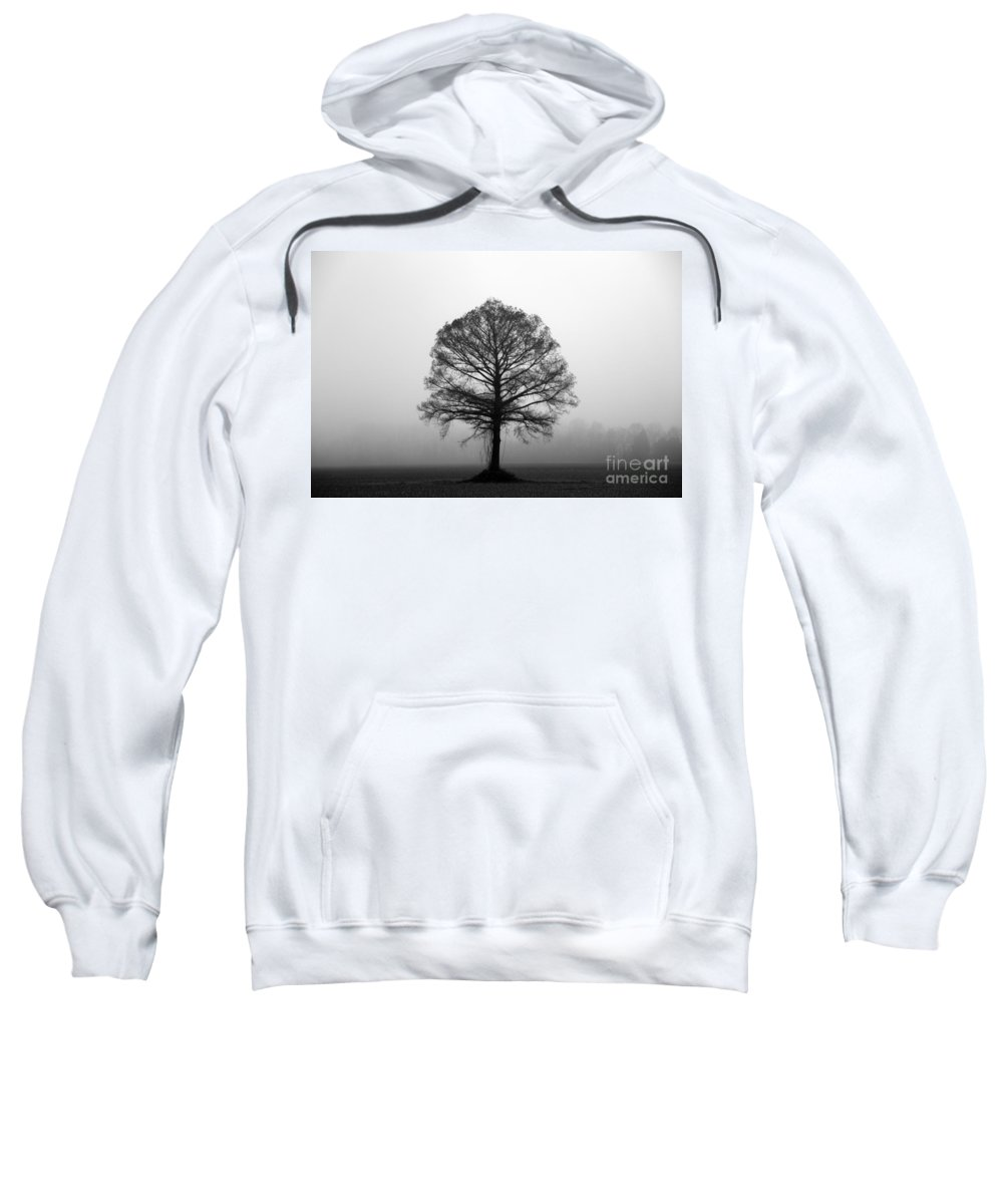 Tree Sweatshirt featuring the photograph The Tree by Amanda Barcon