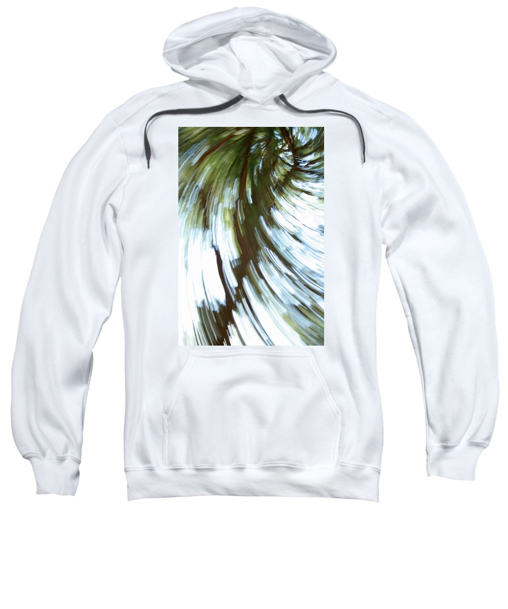 Tree Sweatshirt featuring the photograph Tree Diptych 2 by Ric Bascobert