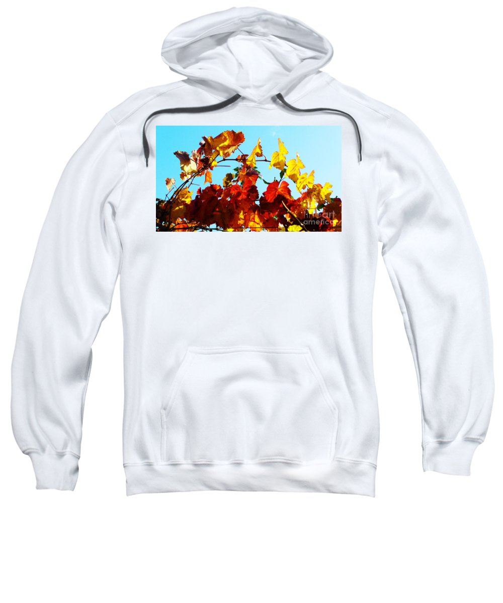 Grape Vineyard Sweatshirt featuring the photograph Vineyard 12 by Xueling Zou