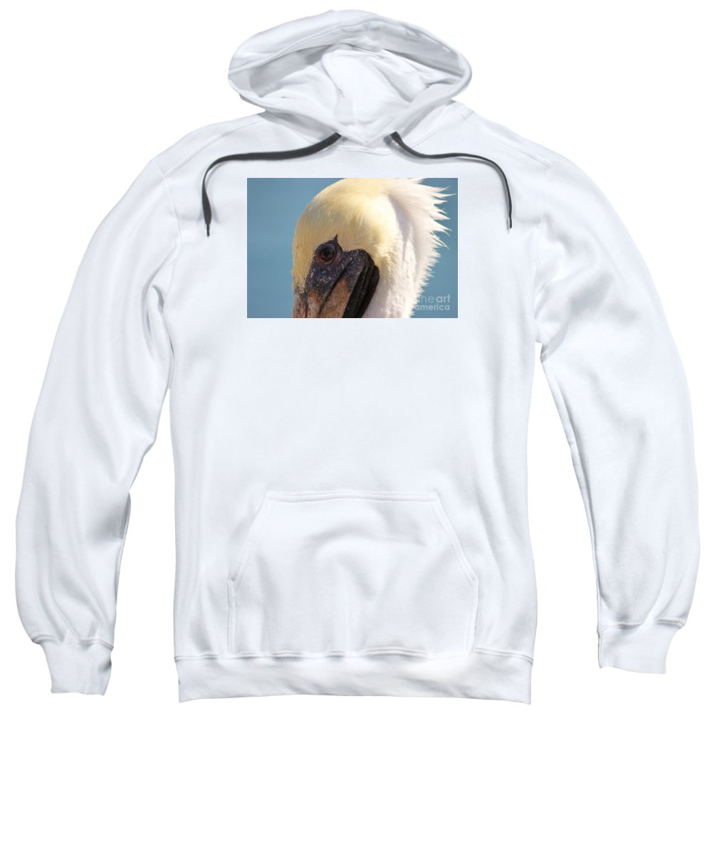Pelican Sweatshirt featuring the photograph Pelican Up Close by Paulette Thomas