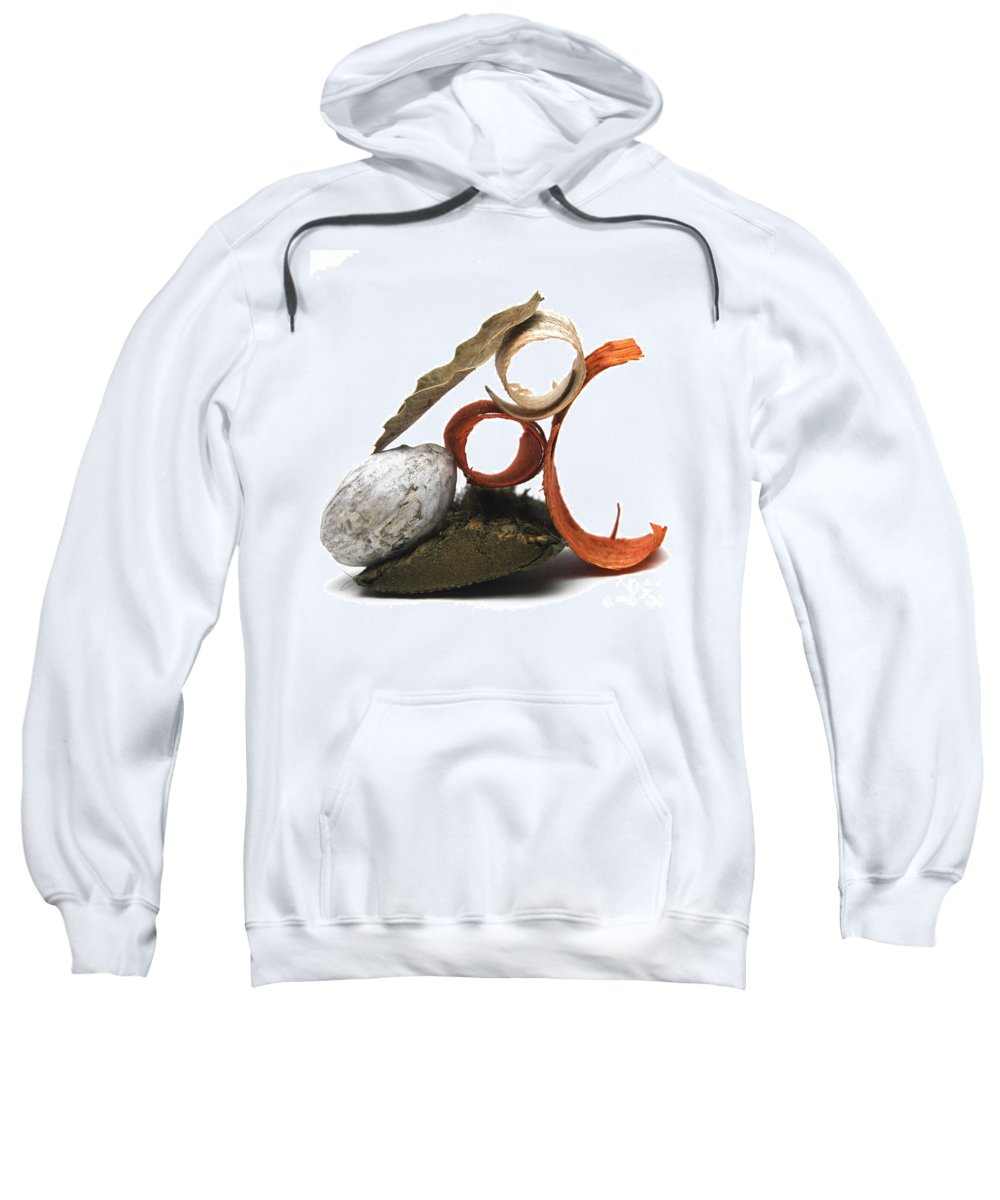 Dried Plant Sweatshirt featuring the photograph Potpourri by Bernard Jaubert