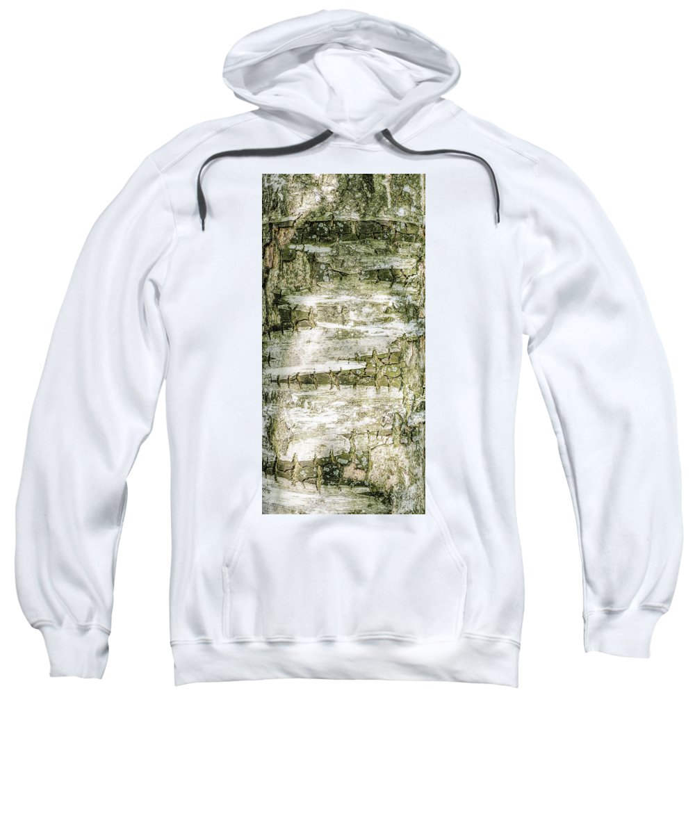 Abstract Sweatshirt featuring the photograph Detail Of Brich Bark Texture by Alain De Maximy