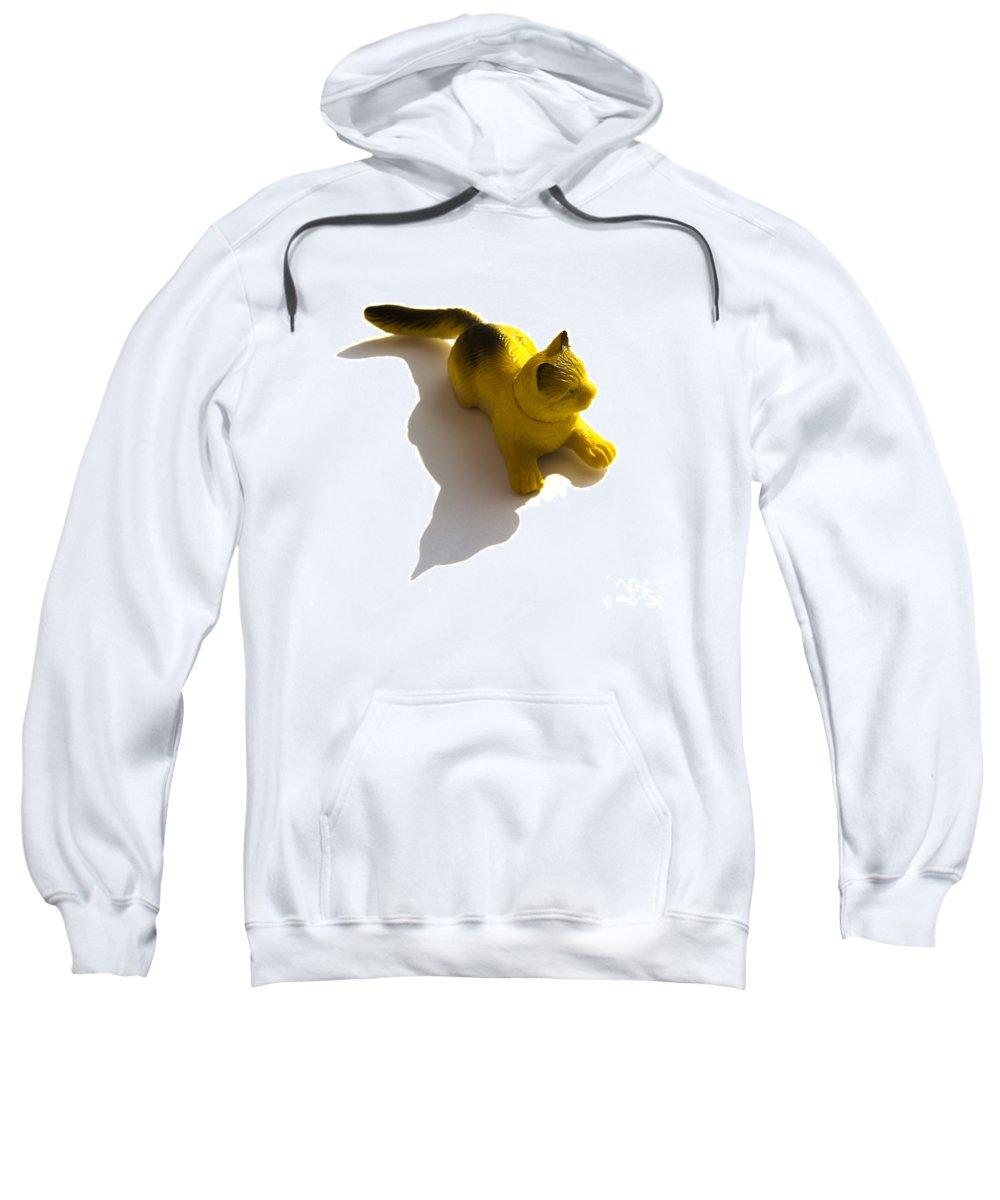 Animal Sweatshirt featuring the photograph Cat Figurine by Bernard Jaubert