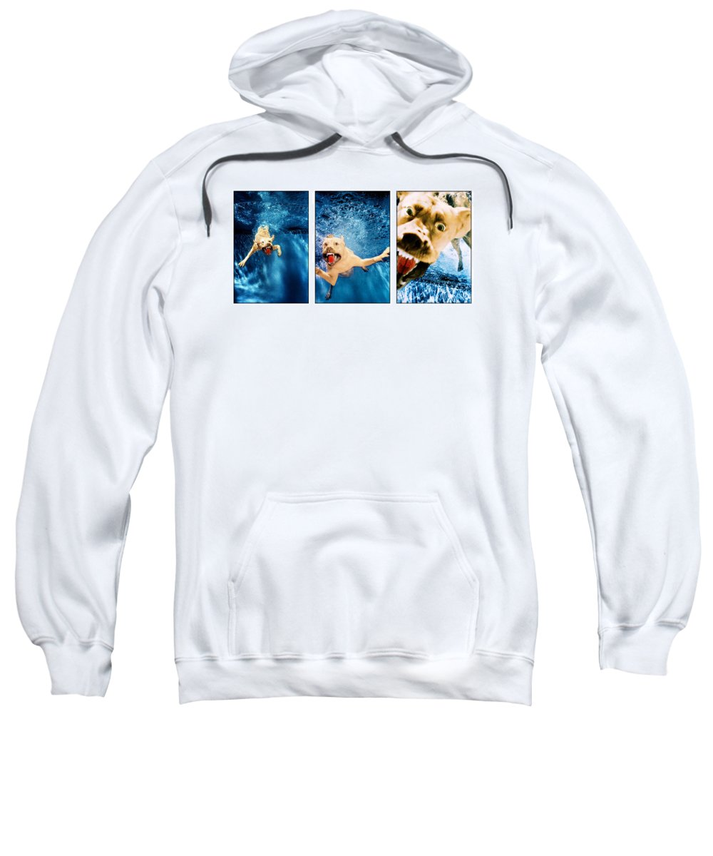 Dog Sweatshirt featuring the photograph Dog Underwater Series by Jill Reger