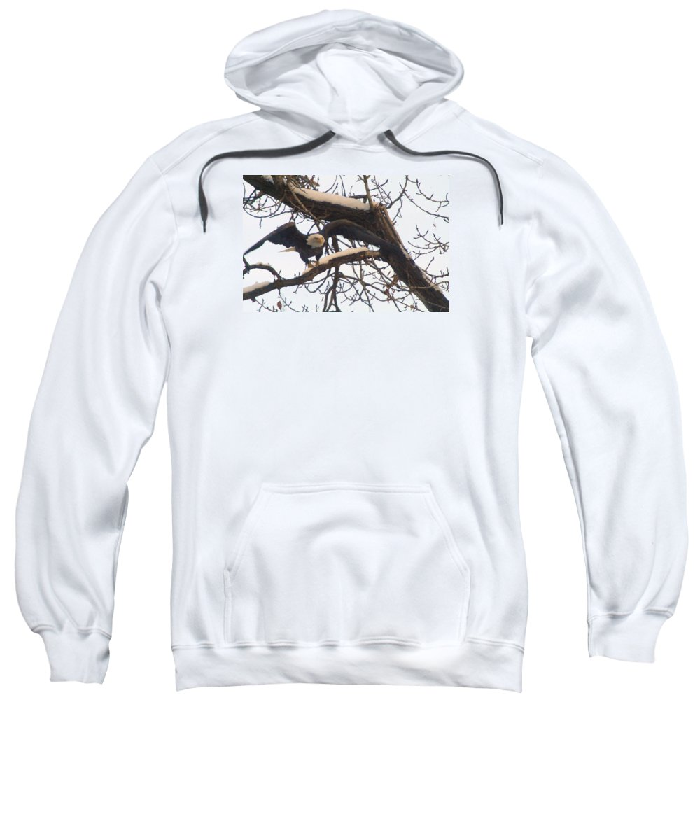 Eagles Sweatshirt featuring the photograph In Take Off by Jeff Swan