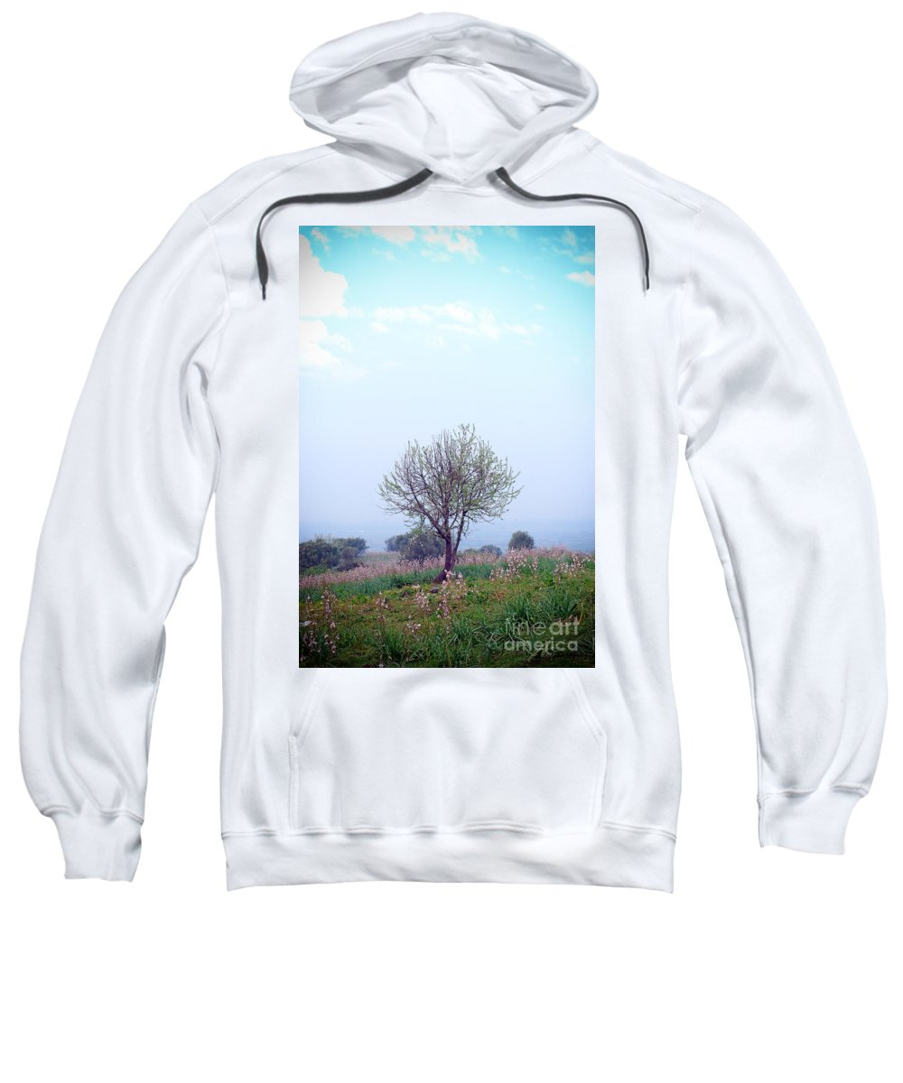 Spring Sweatshirt featuring the photograph Spring Flowers by Artur Gjino