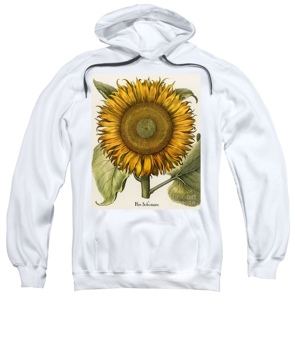 1613 Sweatshirt featuring the photograph Sunflower by Granger