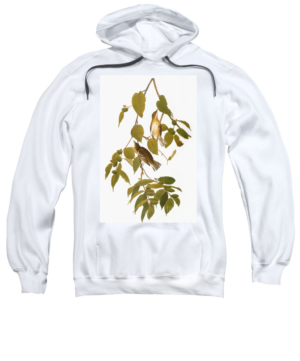 1838 Sweatshirt featuring the photograph Audubon: Warbler by Granger