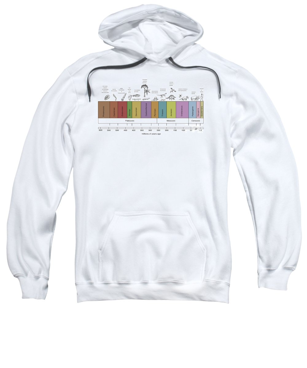 Paleozoic Sweatshirt featuring the photograph Geologic Time Line by Spencer Sutton