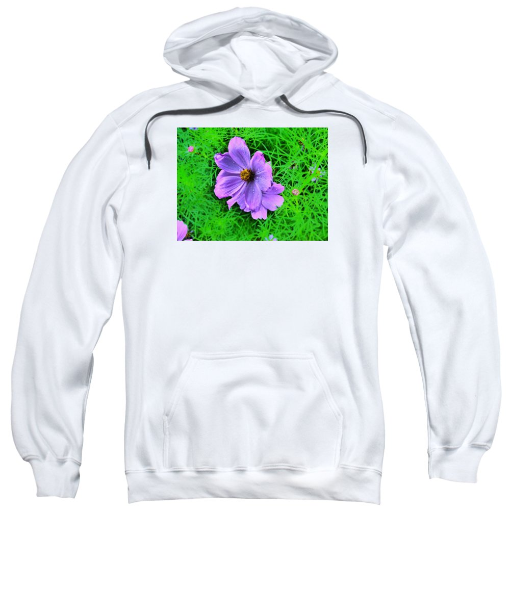 Flower Garden Idaho Photography Sweatshirt featuring the photograph In The Rain by Paul Stanner