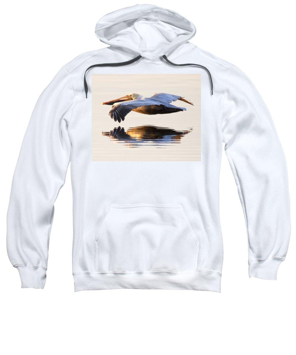 Pelican Sweatshirt featuring the photograph A Closer Look by Janet Fikar