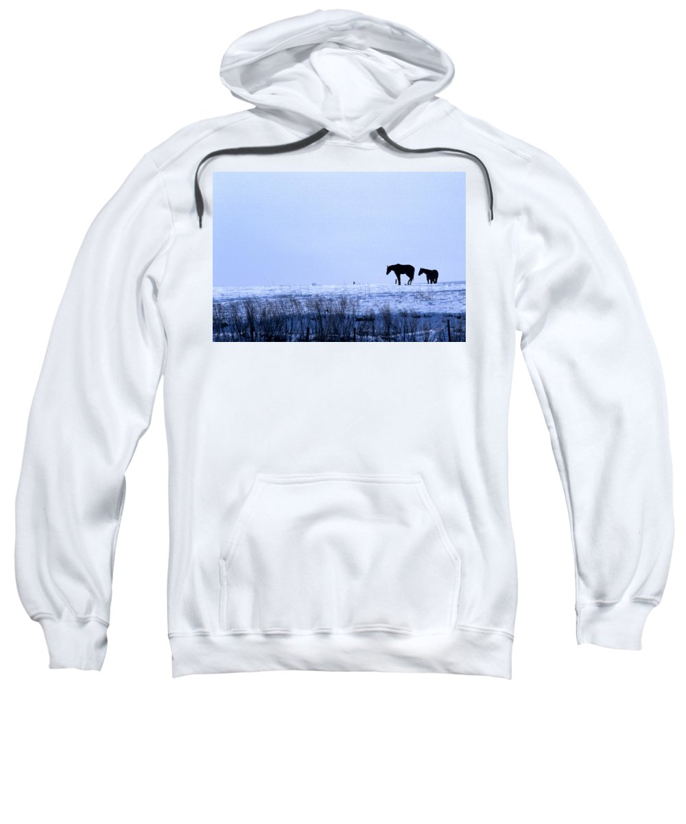 Horses Sweatshirt featuring the photograph A Cold Winter by Jerry McElroy