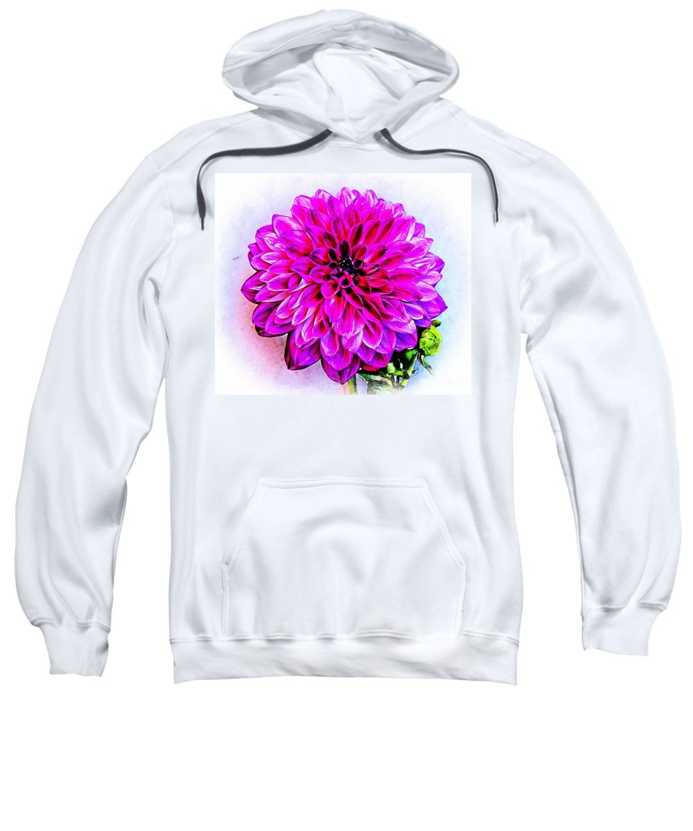 Dahlia Sweatshirt featuring the photograph A Painted Dahlia by Clare Bevan