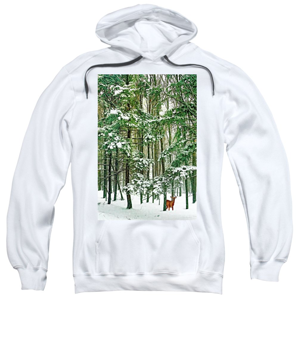 Deer Sweatshirt featuring the photograph A Snowy Day by Steve Harrington