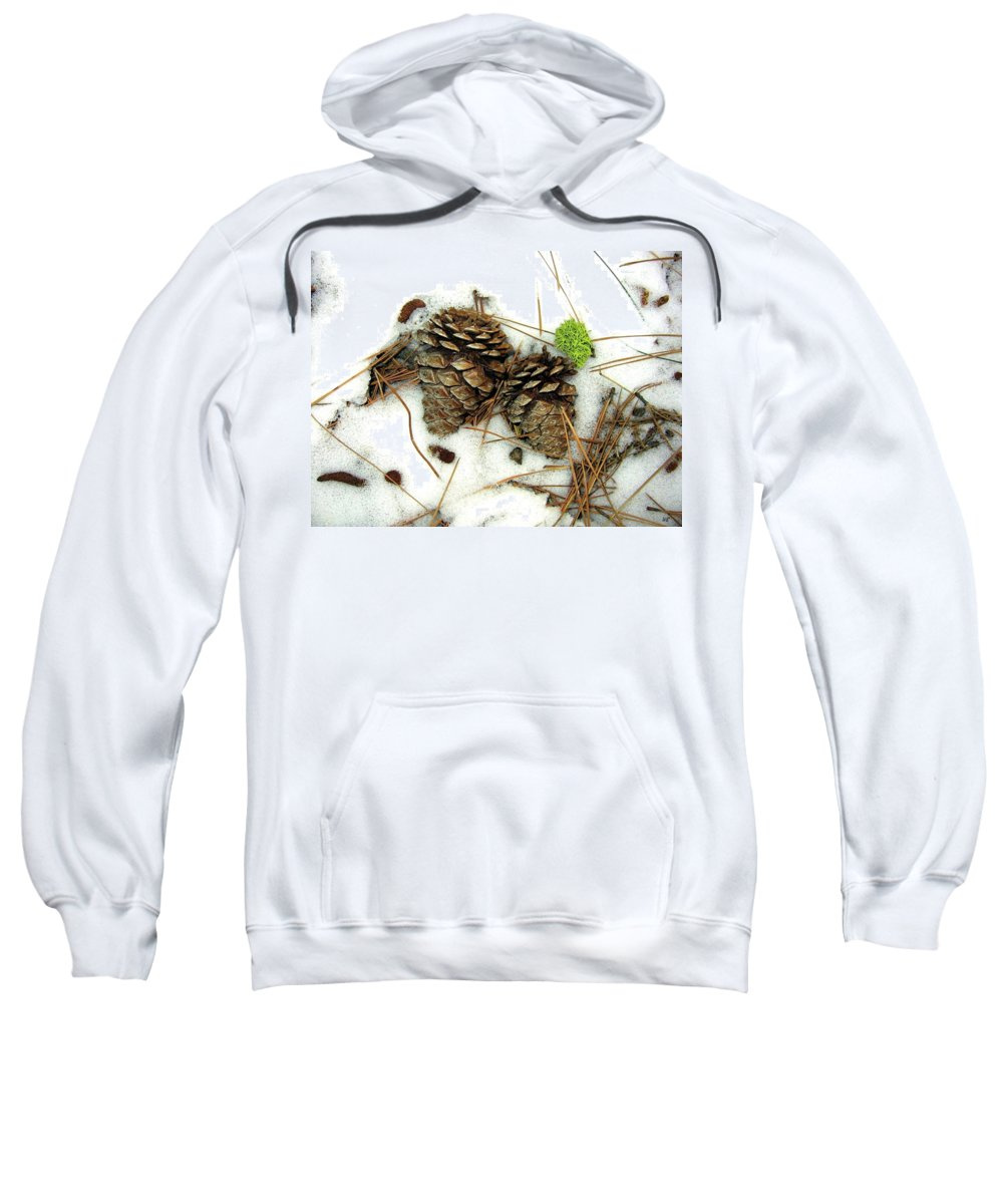 Winter Sweatshirt featuring the photograph A Touch Of Moss by Will Borden