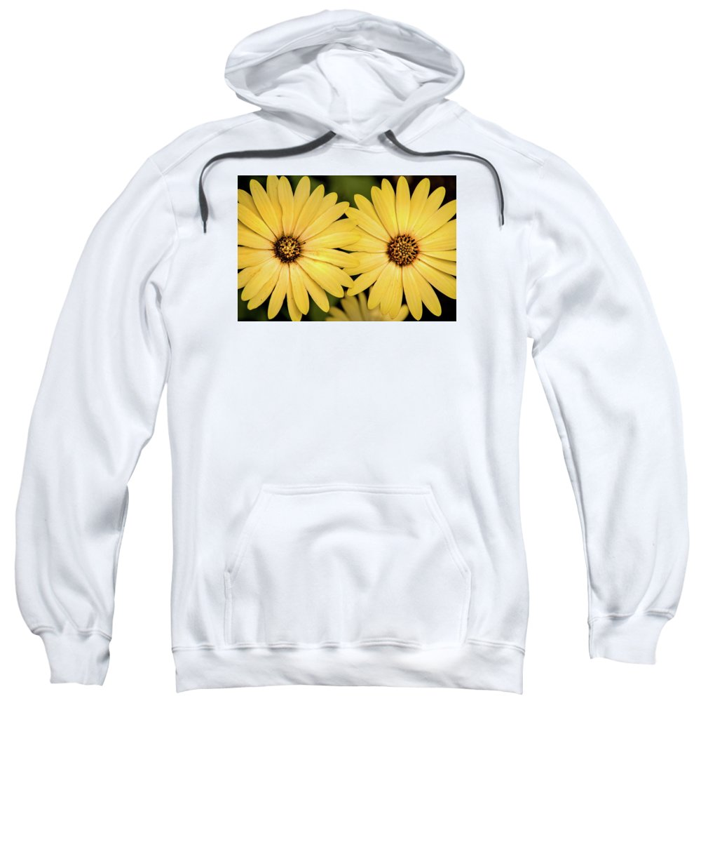 Daisy Sweatshirt featuring the photograph African Daisy-twice by Don Johnson