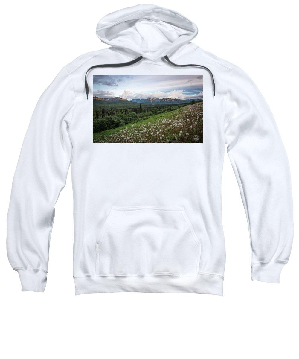 Camper Sweatshirt featuring the photograph Alaskan Dandelions by Travis Elder