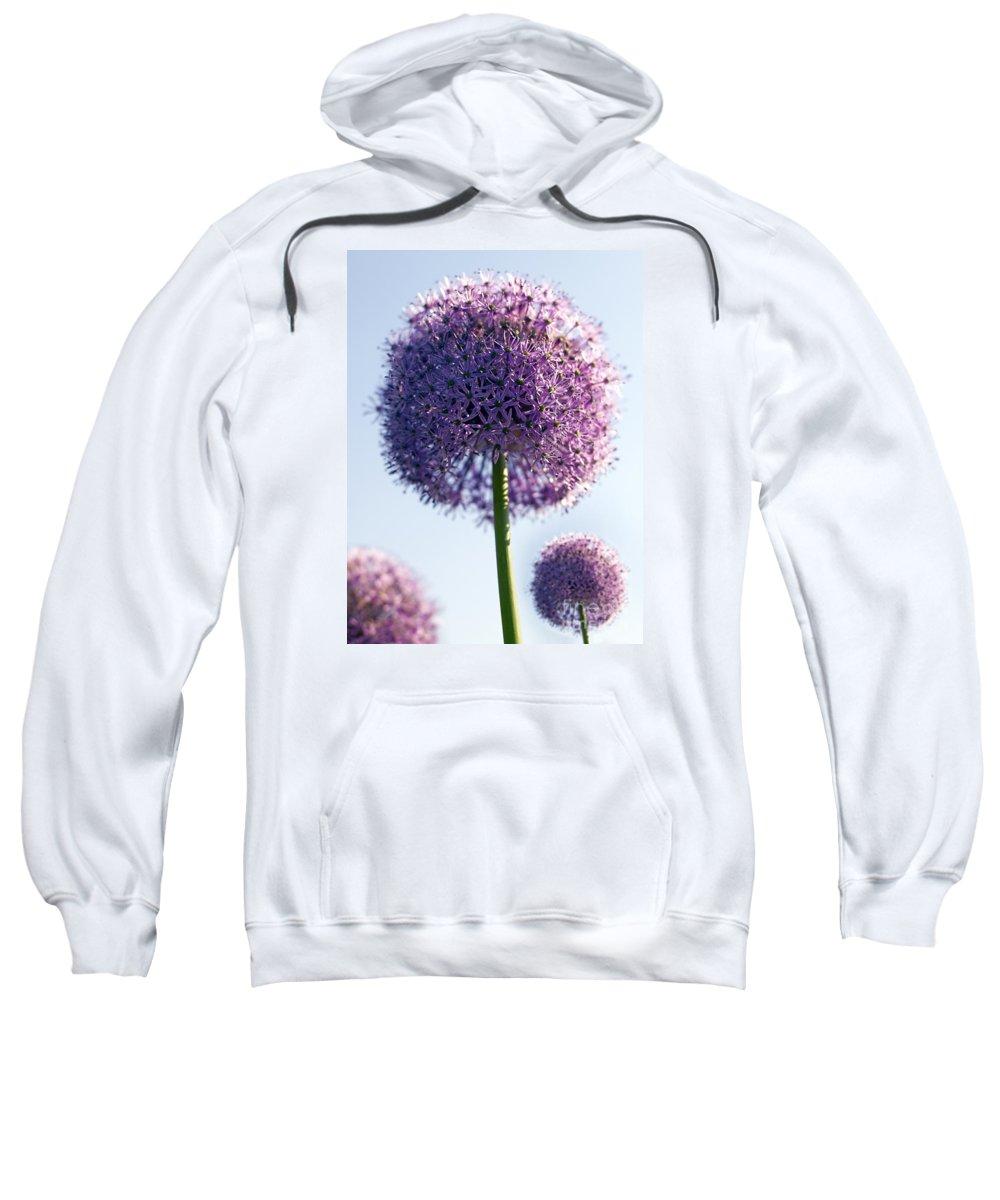 Allium Sweatshirt featuring the photograph Allium Flower by Tony Cordoza