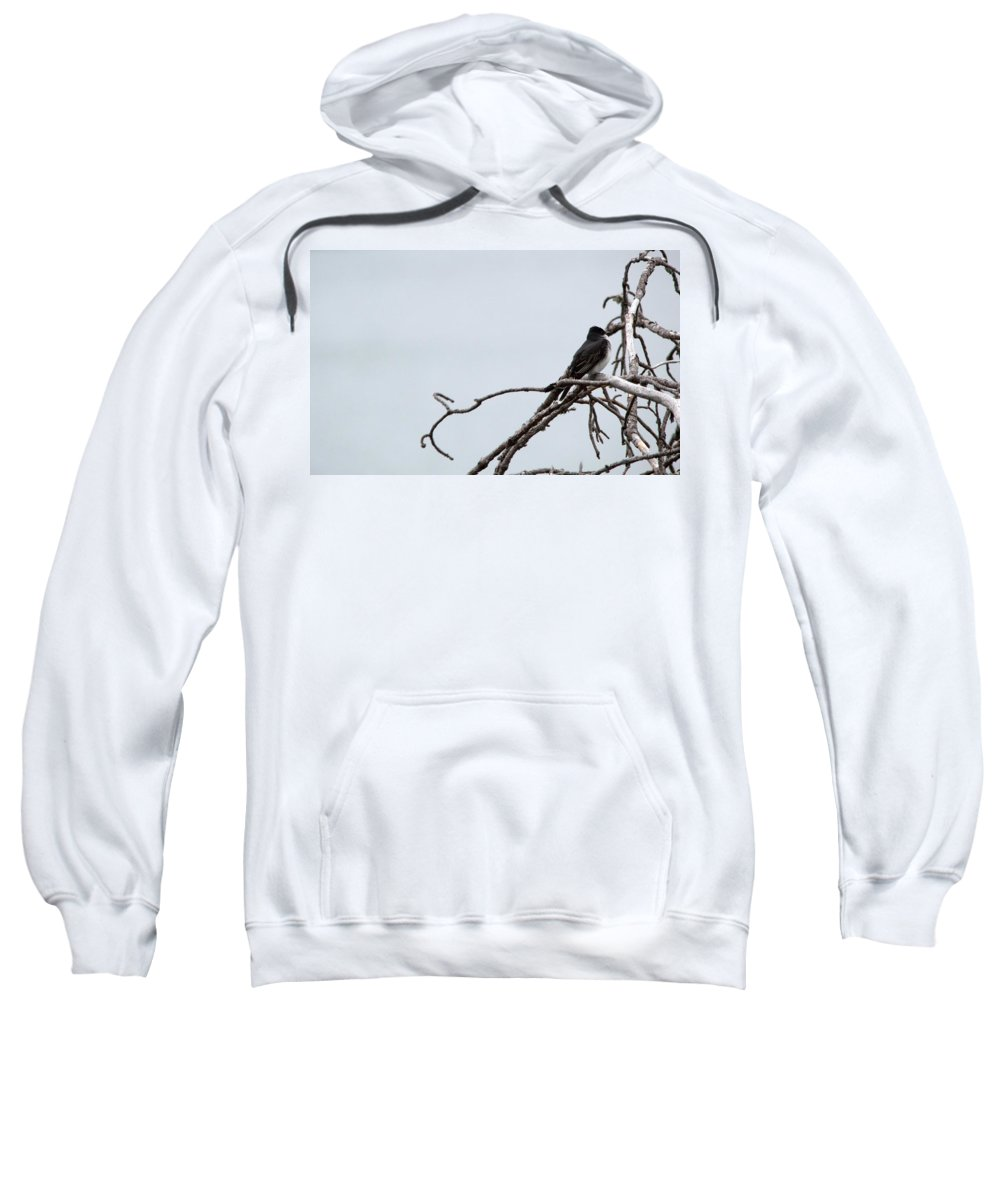 Nature Sweatshirt featuring the photograph Amid The Branches by Linda Kerkau