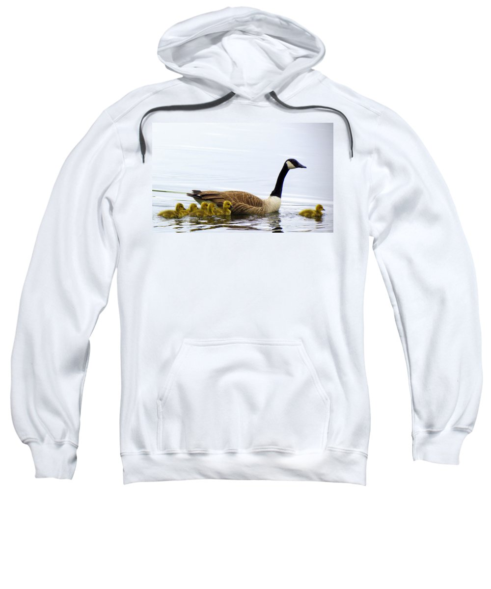 Geese Sweatshirt featuring the photograph And The Littlest One Shall Lead The Way by Lori Pessin Lafargue