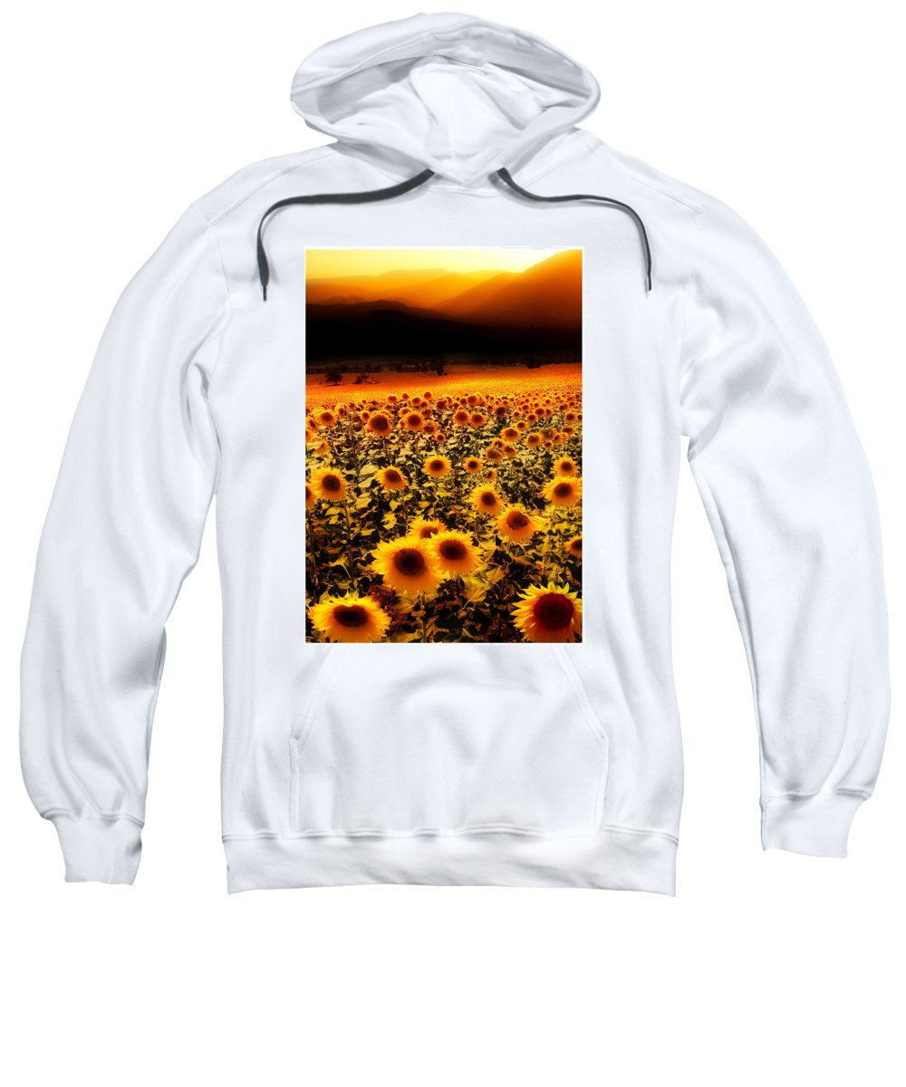 Sunflowers Sweatshirt featuring the photograph Andalucian Suns by Mal Bray