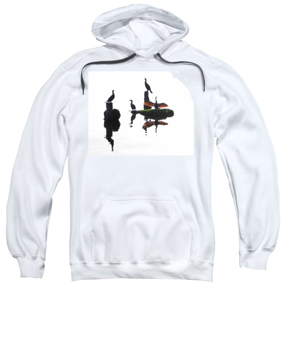Anhingas Sweatshirt featuring the photograph Anhingas Sunning by Francesa Miller