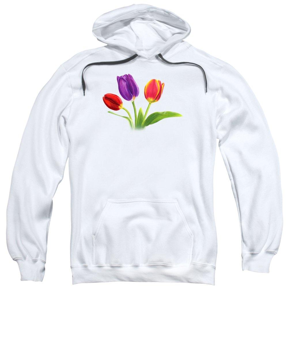 Tulips Hooded Sweatshirts T-Shirts