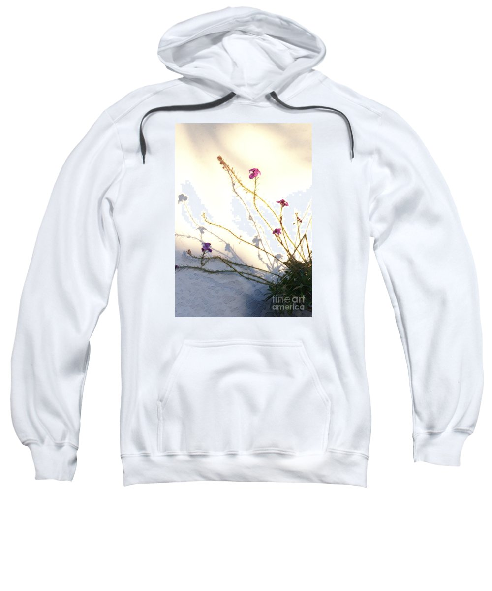 Plant Sweatshirt featuring the photograph Aspire by Linda Shafer
