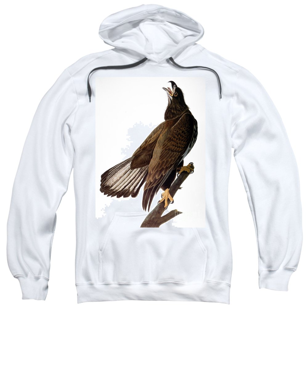 1838 Sweatshirt featuring the photograph Audubon: Bald Eagle by Granger