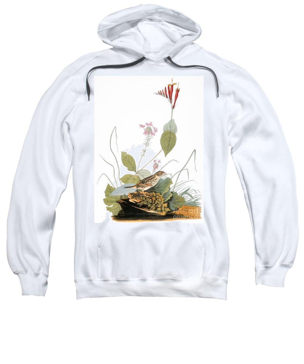 1838 Sweatshirt featuring the photograph Audubon: Bunting by Granger