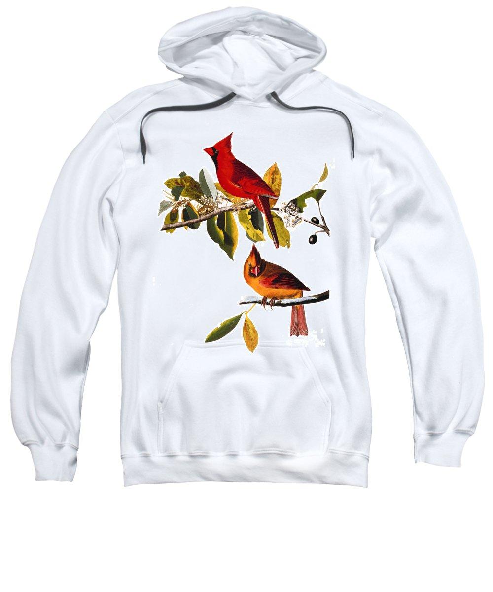 19th Century Sweatshirt featuring the photograph Audubon: Cardinal by Granger