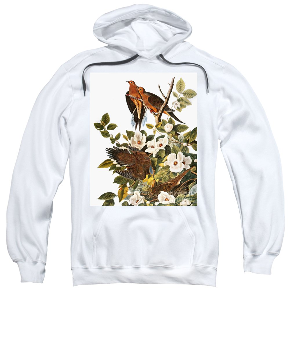 1838 Sweatshirt featuring the photograph Audubon Dove by John James Audubon