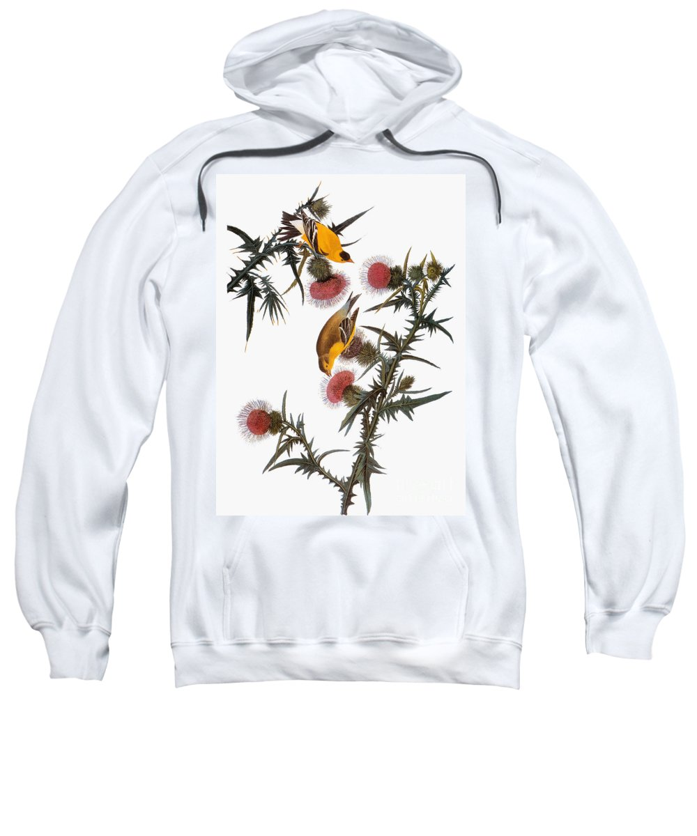 1838 Sweatshirt featuring the photograph Goldfinch by John James Audubon